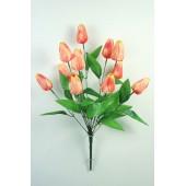 Букет тюльпанов БС151крем