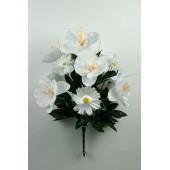 Букет орхидей с космеей БС156б