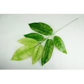 Ветка манго 7 листьев ЗК064-1