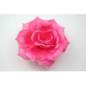 Роза остролистная ГК072м
