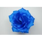 Роза остролистная ГК072с