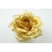 Роза остролистная парча ГК073зол