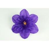 Нарцисс атласный ГК106-1ф