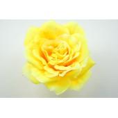 Бутон розы Император ГК122ж
