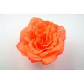 Бутон розы Император ГК122о