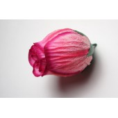 Бутон розы ГК142роз