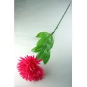 Хризантема одиночная ЦС125м