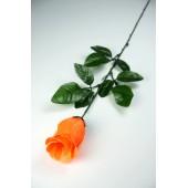 Роза одиночная бутон ЦС132о