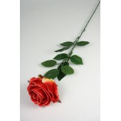 "Роза одиночная ""Клементина"", ЦС146о"